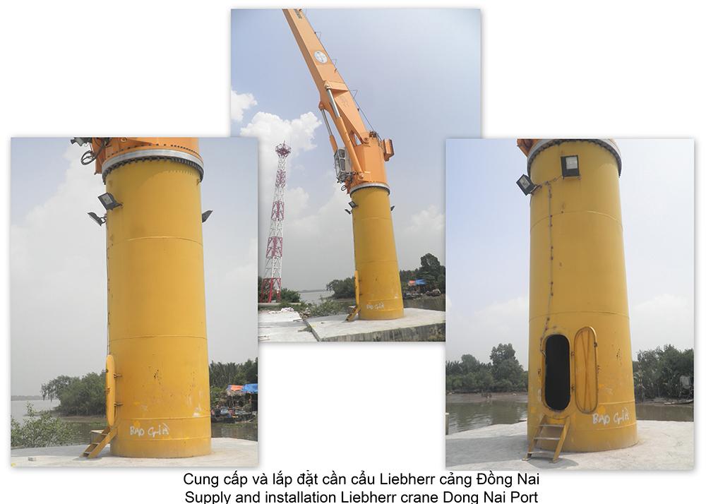 Cung cấp và lắp đặt Cần cẩu cảng Đồng Nai
